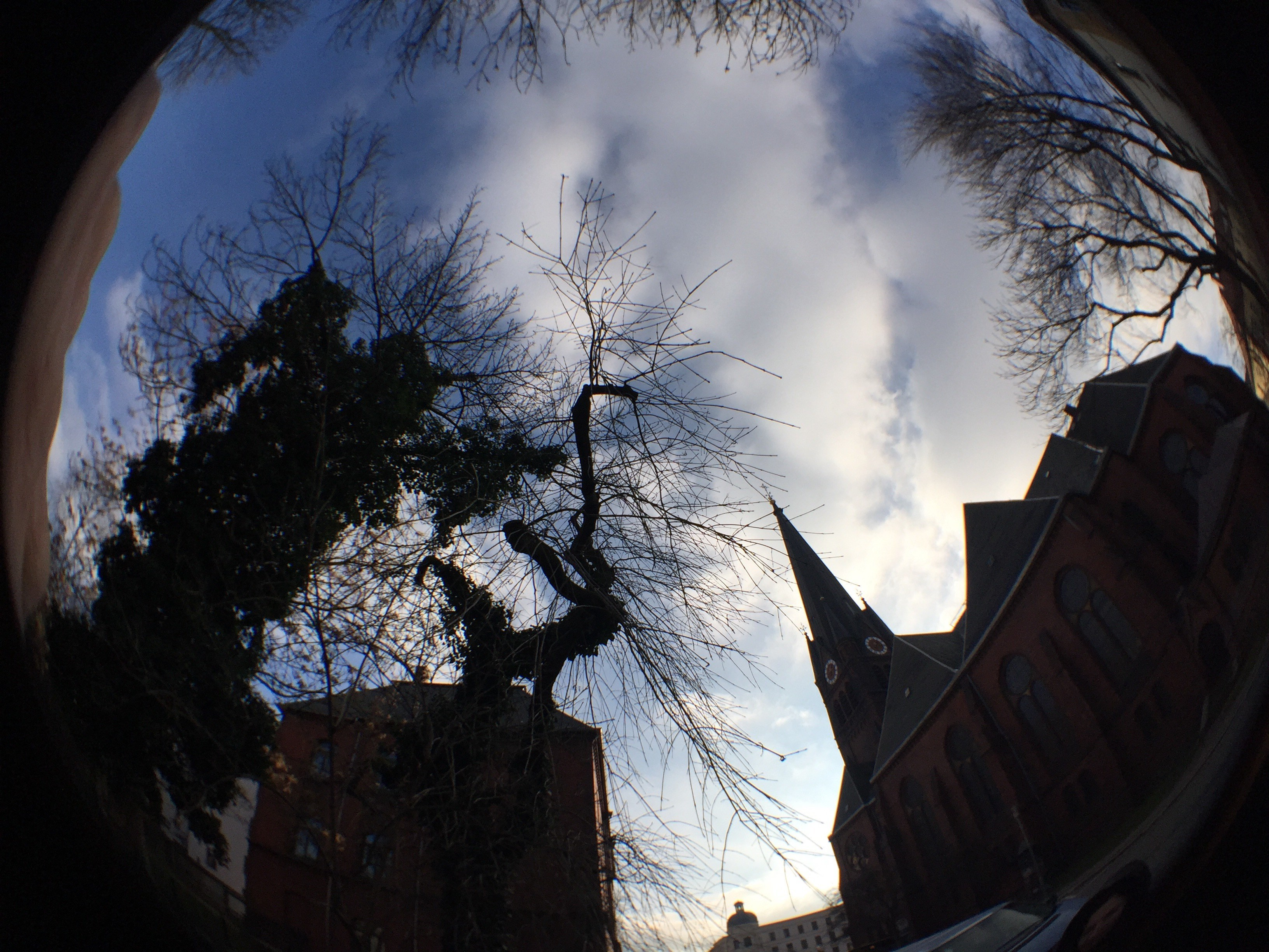 This is what the fisheye lens is all about.